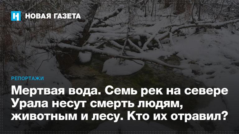Мертвая вода. Семь рек на севере Урала несут смерть людям, животным и лесу. Кто их отравил?