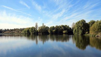 Общественники рассказали о бедственном экологическом состоянии рек Северного Урала