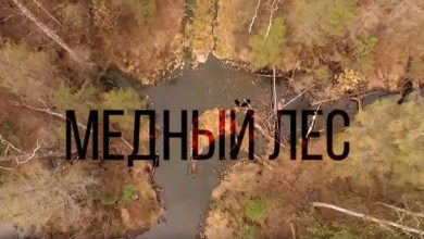 «Медный лес» в эфире. Вся правда об экологии севера Свердловской области в фильме «ФедералПресс»