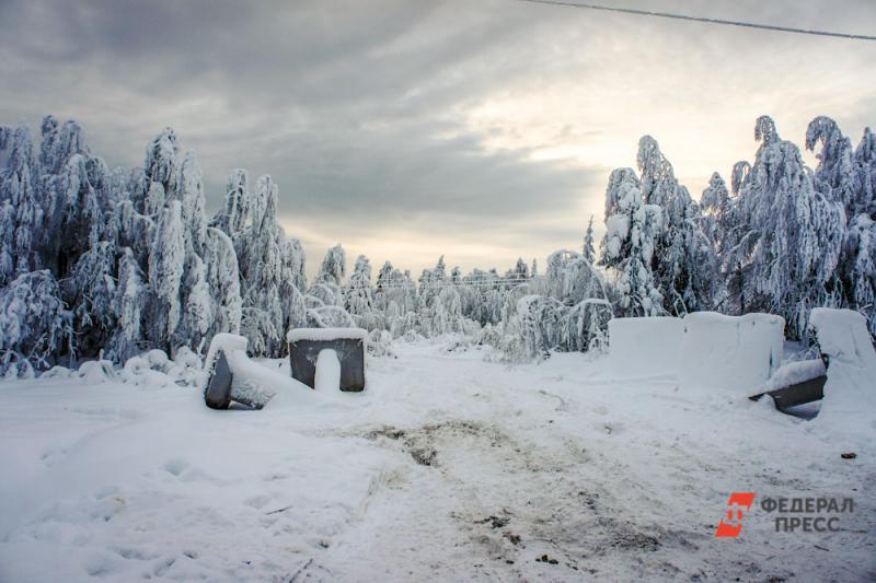 Естественная среда под угрозой: Государственный природный заповедник «Денежкин Камень» хотят преобразовать в национальный парк