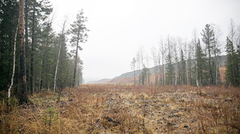 Журналист попросил Куйвашева не делать национальный парк из заповедника «Денежкин камень»