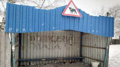 Photo of Остановка для скота