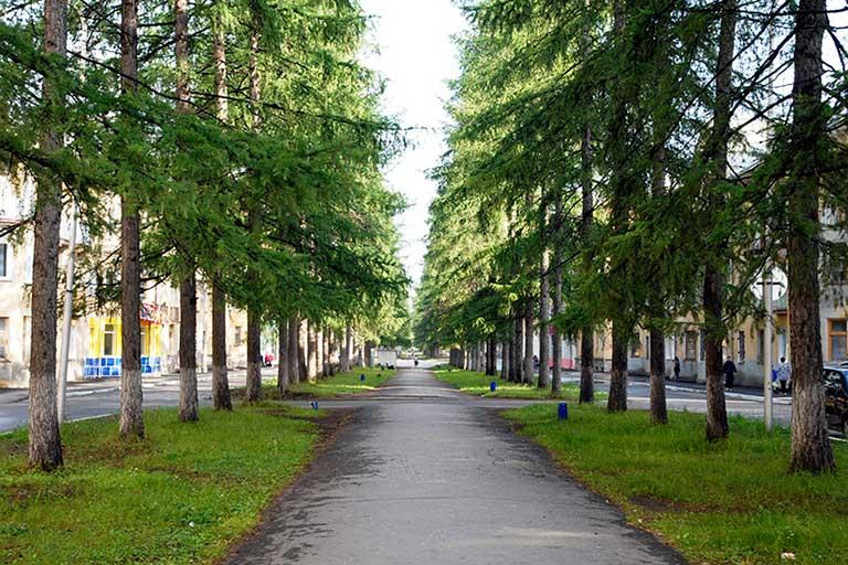 Аллея по улице Мира Североуральск