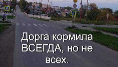 Photo of Дорога кормила ВСЕГДА, но не всех