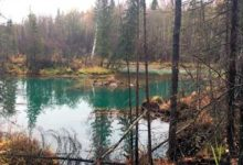Уровень меди в загрязненных северных реках Урала превышен в 145 000 раз