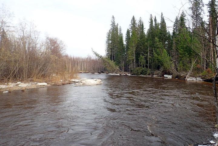Состоялось долгожданное совещание по «мертвым рекам Северного Урала»