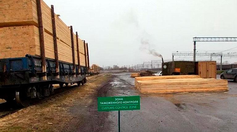 Уральские таможенники не дали вывезти лес на 1,5 млн рублей
